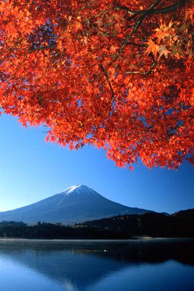 【暑期】A1+A2日本本州双古都惠享6日游