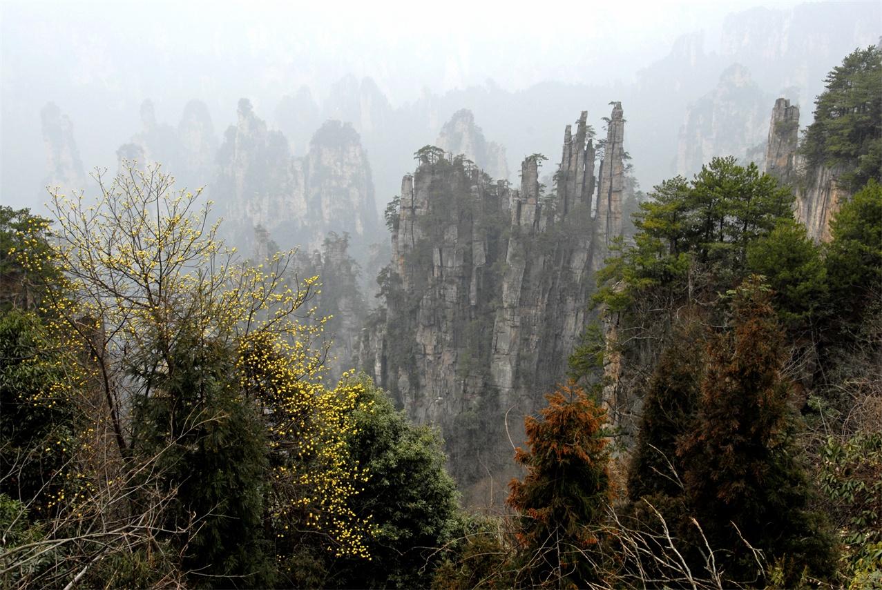 【硒湘记全景】武汉、张家界、天门山、石门河地心大峡谷、凤凰古城双动七日跟团游