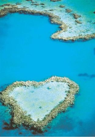澳大利亚飞跃心形大堡礁9日半自助(圣灵群岛心形大堡礁4.5小时水上飞机+白沙滩+考拉奔度假山庄)MU可配全国联运