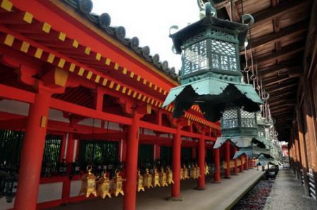 【樱花季】A1日本本州双古都特惠6日游