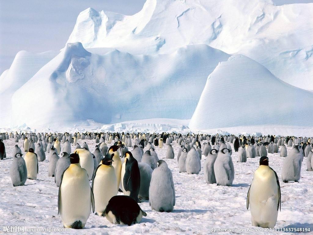 【探索号】阿根廷+南极16日12晚跟团游(含领队,长城站,华人包船,冰缘巡游,冰川登陆,送冲锋衣,布宜诺斯艾利斯,火地岛国家公园)
