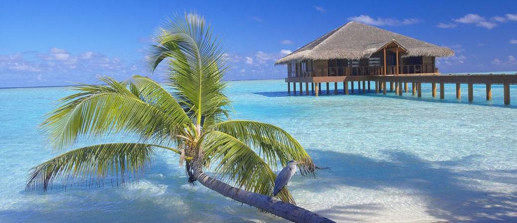 【国庆】马尔代夫曼德芙士 Medhufushi 5晚7日自由行(新航转机 ,1晚马累当地住宿,曼德芙士2沙2水,含一价全包 ,水飞上岛)