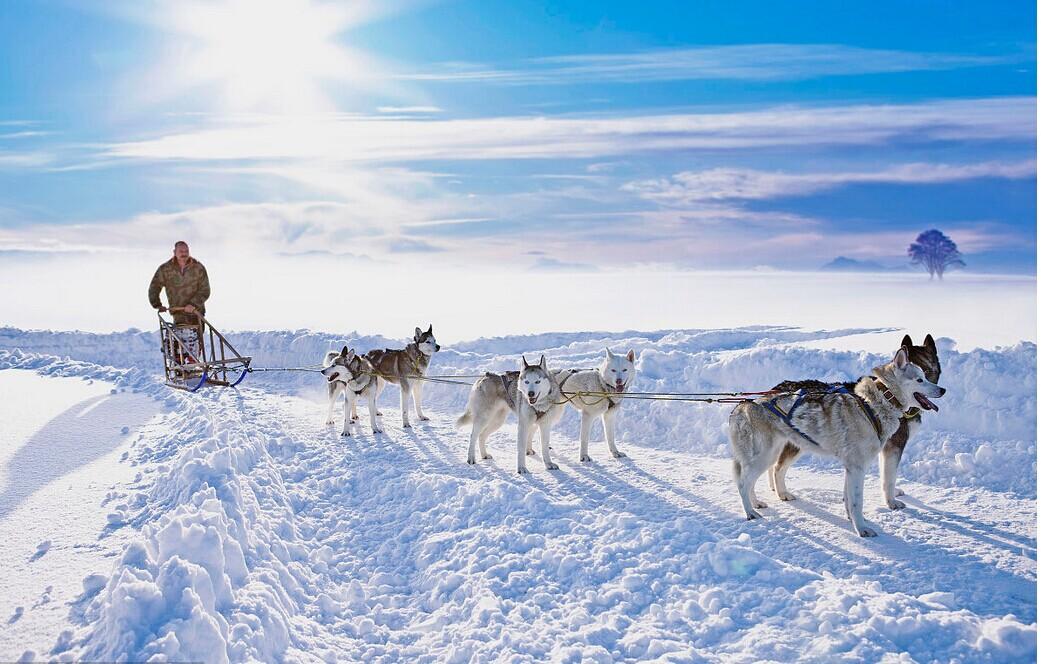 芬兰一地9天7晚 20人小团(AY+玻璃屋+桑普号破冰船+多项雪上项目体验)