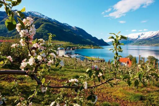 瑞典+丹麥+挪威+芬蘭+愛沙尼亞8晚10日游(芬蘭航空+卑爾根+塔林+瑞典肉丸餐圣誕小鎮+松哈雙峽灣+可異地錄指紋)雙郵輪