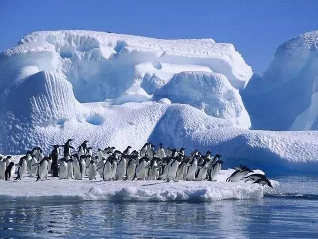 【春节】南极大陆+智利+百内国家公园经典12晚16日跟团游 (包机飞抵南极+华人包船+赠旅行套装)