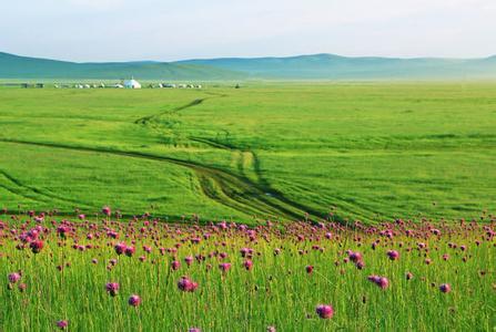 【暑期】呼倫貝爾大草原、額爾古納、冰泉小鎮、撒歡農場、室韋、186彩帶河、國門、猛犸公園、滿洲里雙飛6天5晚跟團游