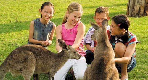 【暑期】澳大利亚+凯恩斯7晚9日游(蓝山+歌剧院+酷牛牧场+大堡礁+华纳+天堂农庄+海洋世界+直升机+三道式游船晚餐+牧场自助餐品尝牛排+大堡礁自助餐)