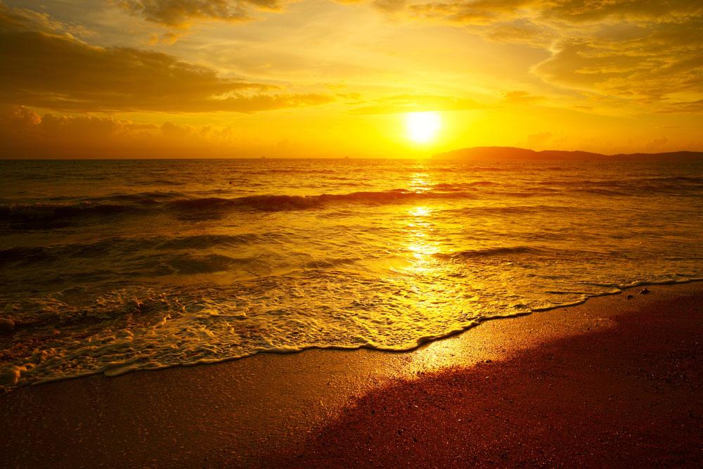 【會員日】【AITS五大公園】美國東西海岸+夏威夷16晚18日游(MU 夏進紐出,獨家入住黃石森林內小木屋)