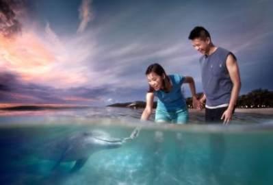 【春節】澳凱墨8晚11日(純玩+歌劇院入內+海豚島+大堡礁+企鵝歸巢+雨林纜車)