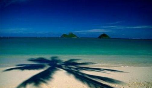 【春节】【春节班期】夏威夷8日半自助游(国际段东航直飞,酒店可升级,可选含大岛行程,威基基海滩、珍珠港、恐龙湾、海泉喷口、大风口)