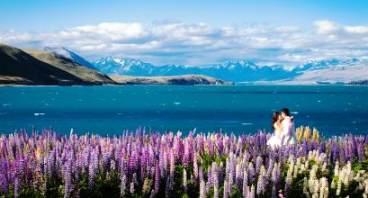【暢收】澳新凱墨南北島21晚23天(企鵝歸巢+大堡礁+可倫賓+冰川+格林諾奇+皇后鎮自由活動+丹尼丁+可拍照螢火蟲洞+堪培拉)